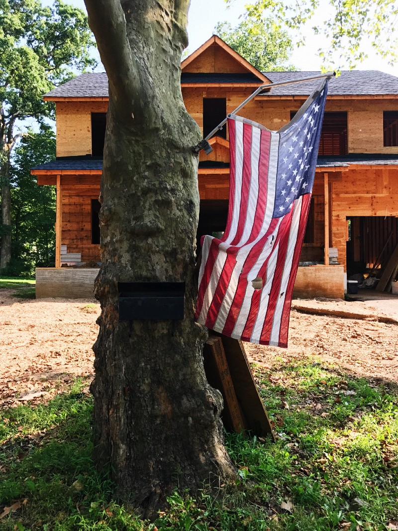 Photo of American flag on tree
