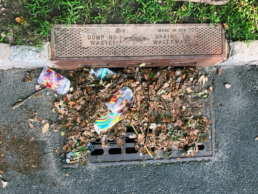 Photo of storm drain blocked by litter